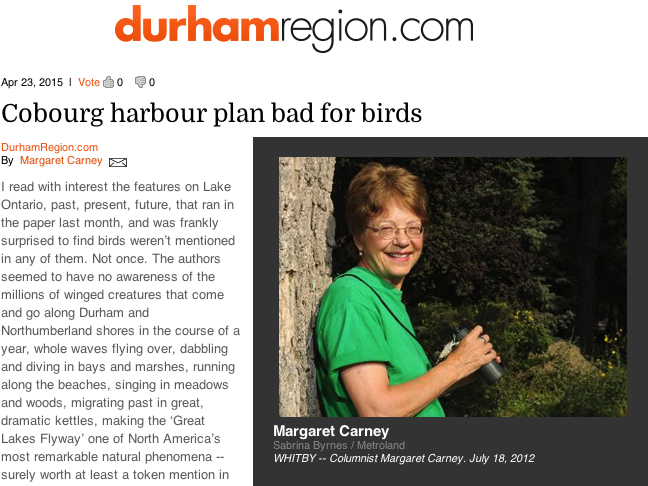 margaret carney article
